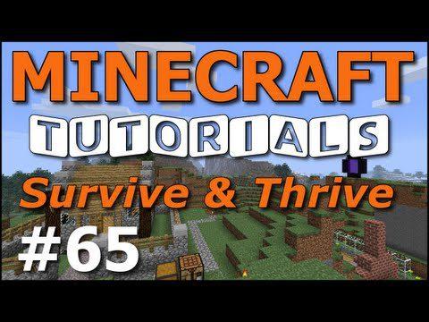 Tips N Tricks Minecraft Videos 3d